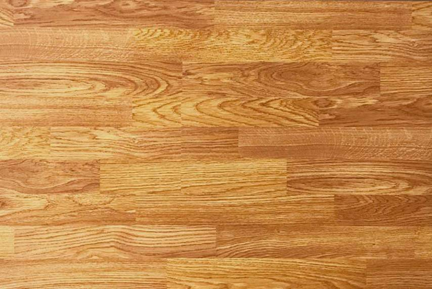 Royaltech Red Oak 8mm Laminate Flooring     Royal Parquet Group Royaltech Red Oak 8mm Laminate Flooring
