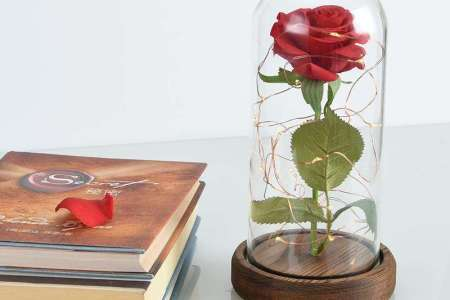 Best Wild Flowers Beauty And The Beast Flower Vase Wild Flowers