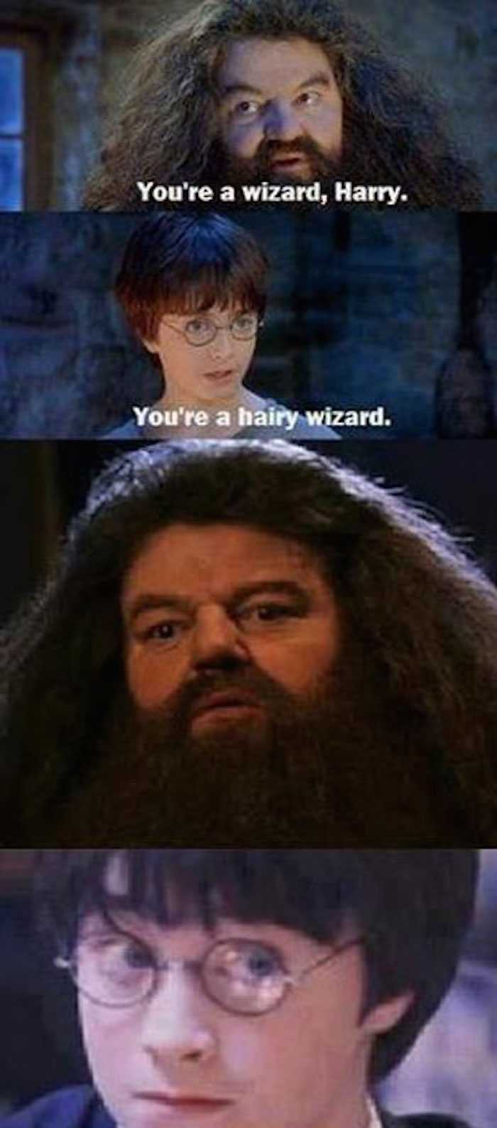 Flash Youre Wizard Harry