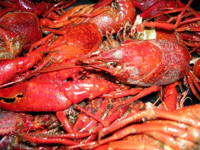 San Restaurants Ca Francisco Seafood Top