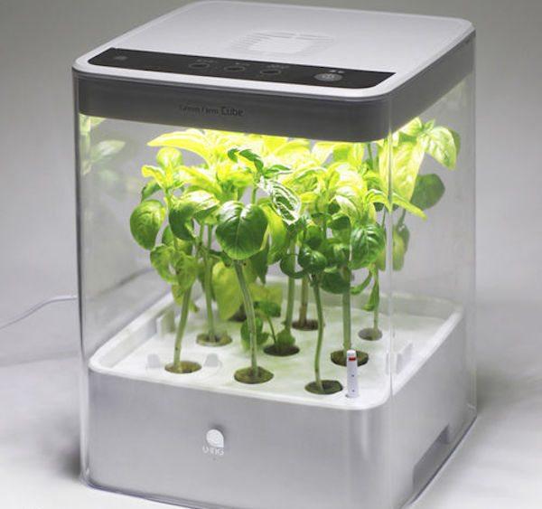 Hydroponic Grow Box Systems