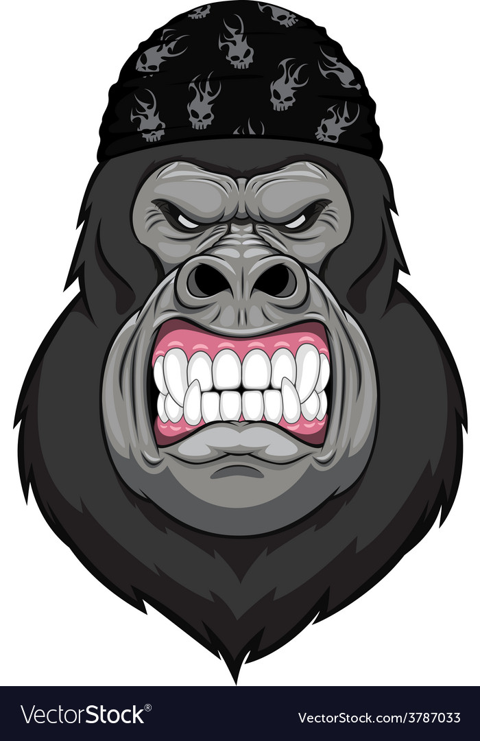 Fist Angry Silverback Gorilla Drawings