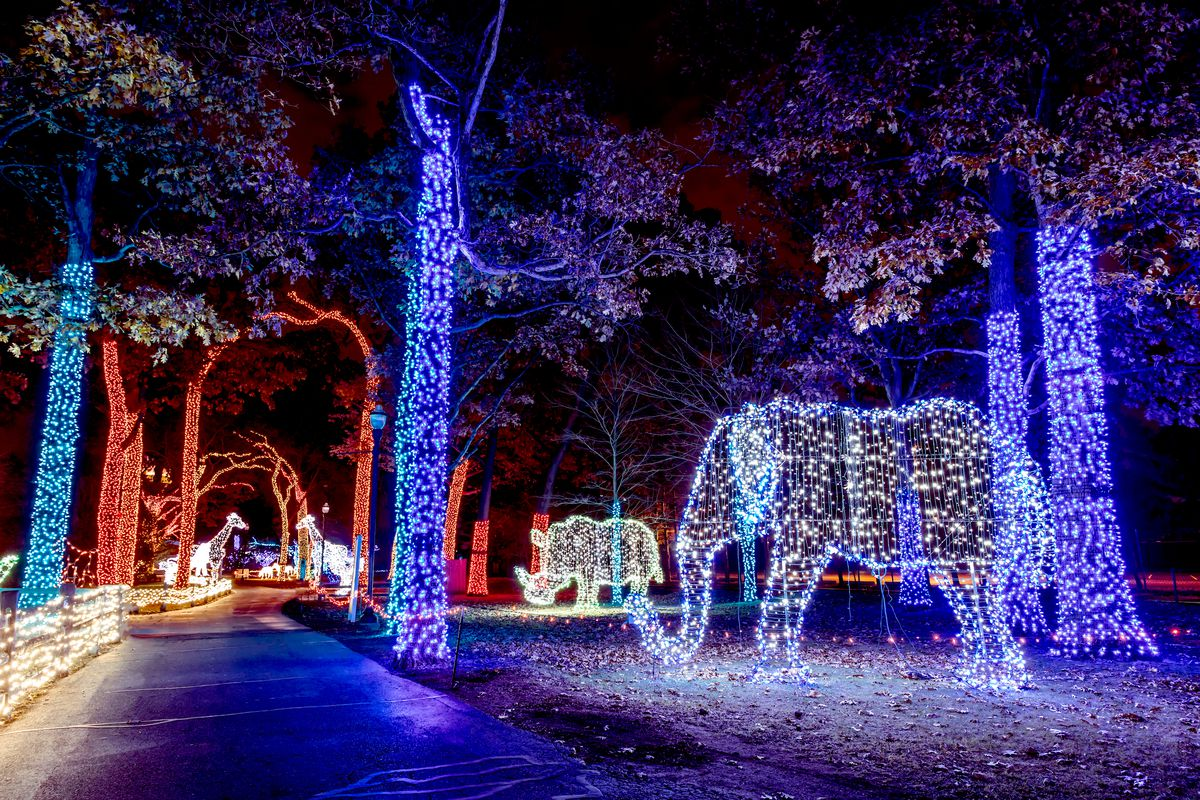 Zoo Lights 2017 Chicago