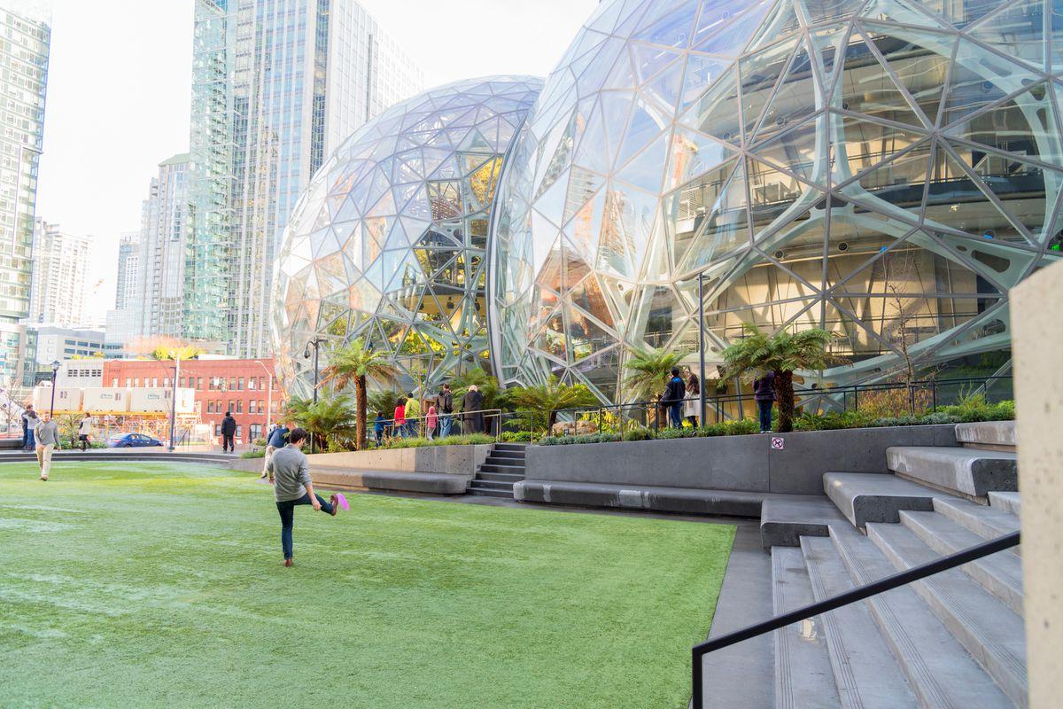 Amazon Plants Sale