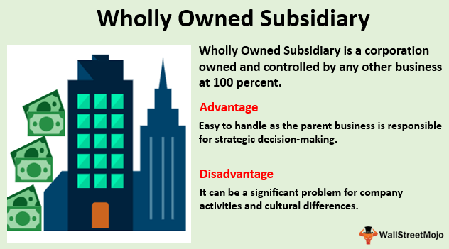 Wholly Owned Subsidiary Definition Examples Beginner