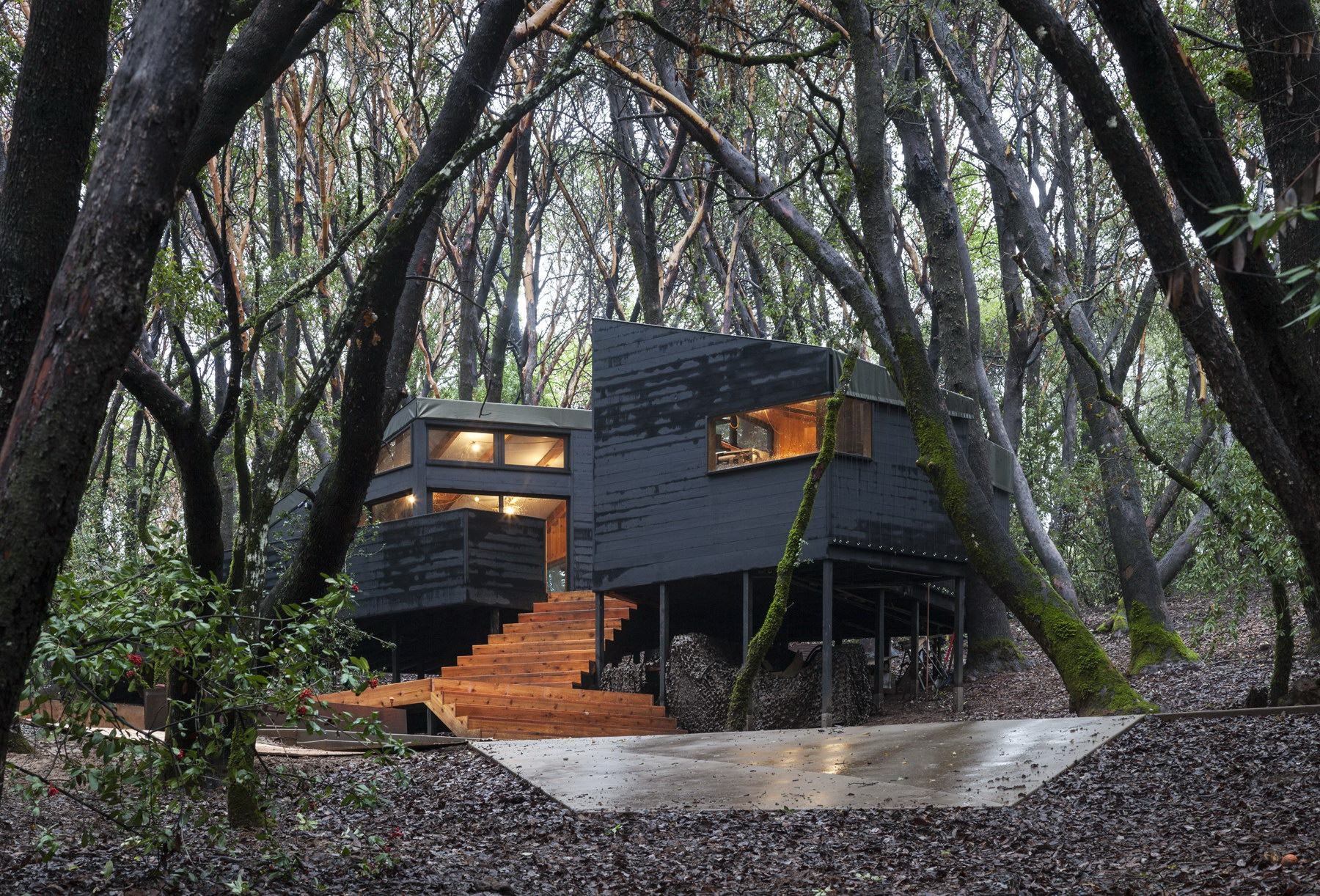 Forest House Complex Of Nine One Room Cabins By Envelope A D