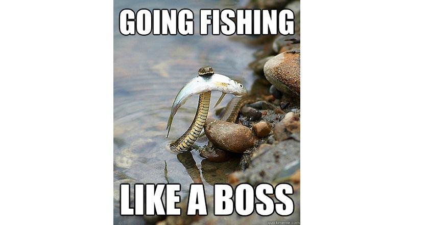 Funny Texas Flood Memes