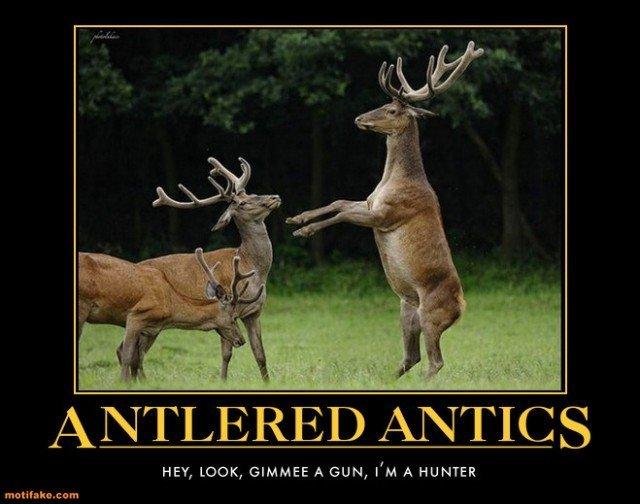 Funny Memes Deer Hunting