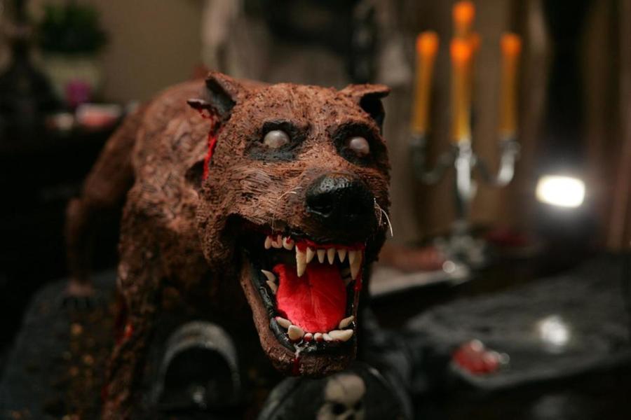 Halloween Zombie Dog Cake Cakecentral Com