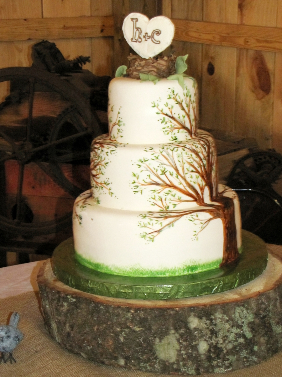 Painted Tree Cake Cakecentral Com