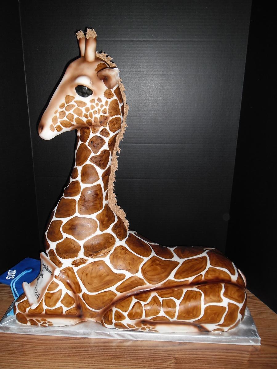 3d Giraffe Cake Cakecentral Com
