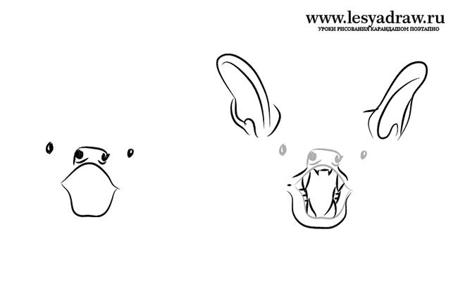 Bagaimana untuk menarik haiwan: kelawar, imej # 28