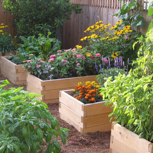 Raised Vegetable Garden Troughs