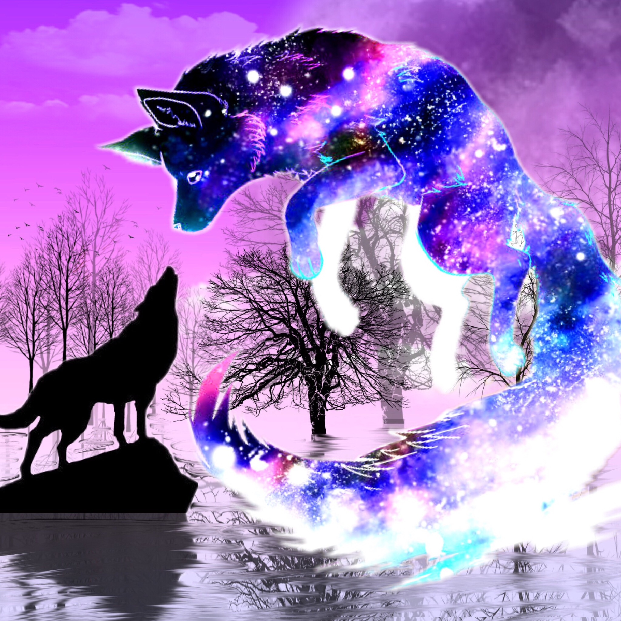 wolf wolves silhouette silhouettes galaxy reflection...