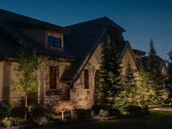 Tree Lighting Ideas 4 Concepts For Lighting Your