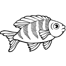 koi fish coloring pages # 38