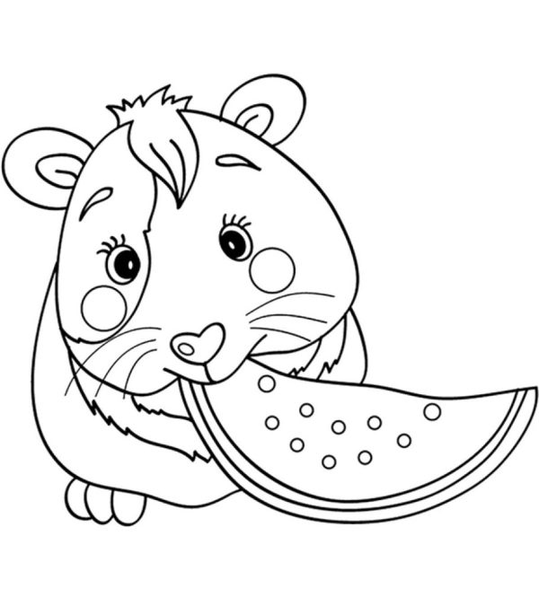 guinea pig coloring page # 0