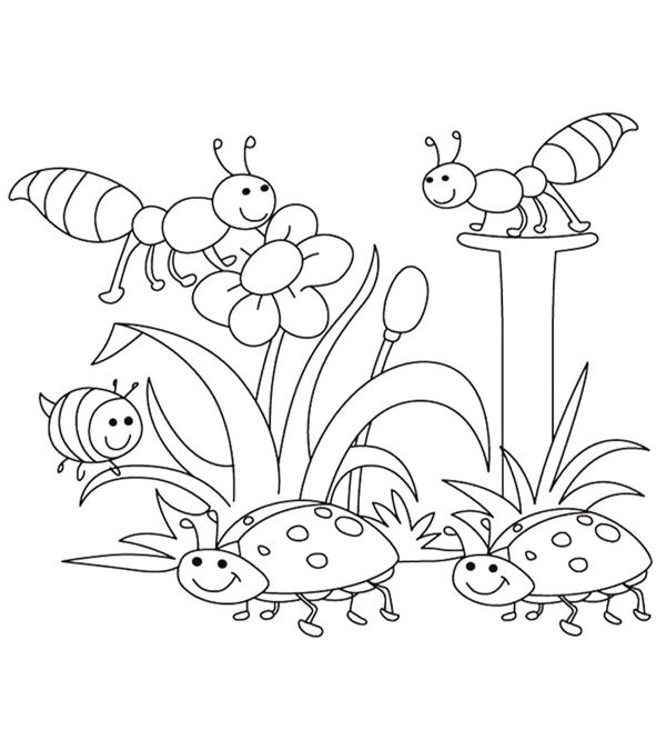 seasons coloring pages # 80