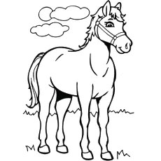 horse coloring pages # 0