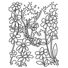 coloring pages flower # 15