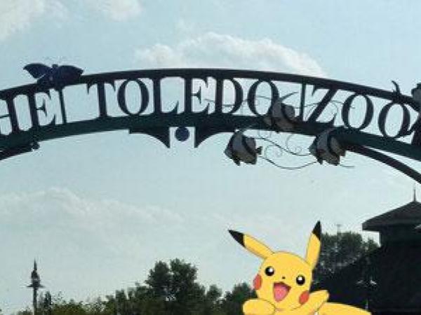 Zoo Lights Cleveland Ohio