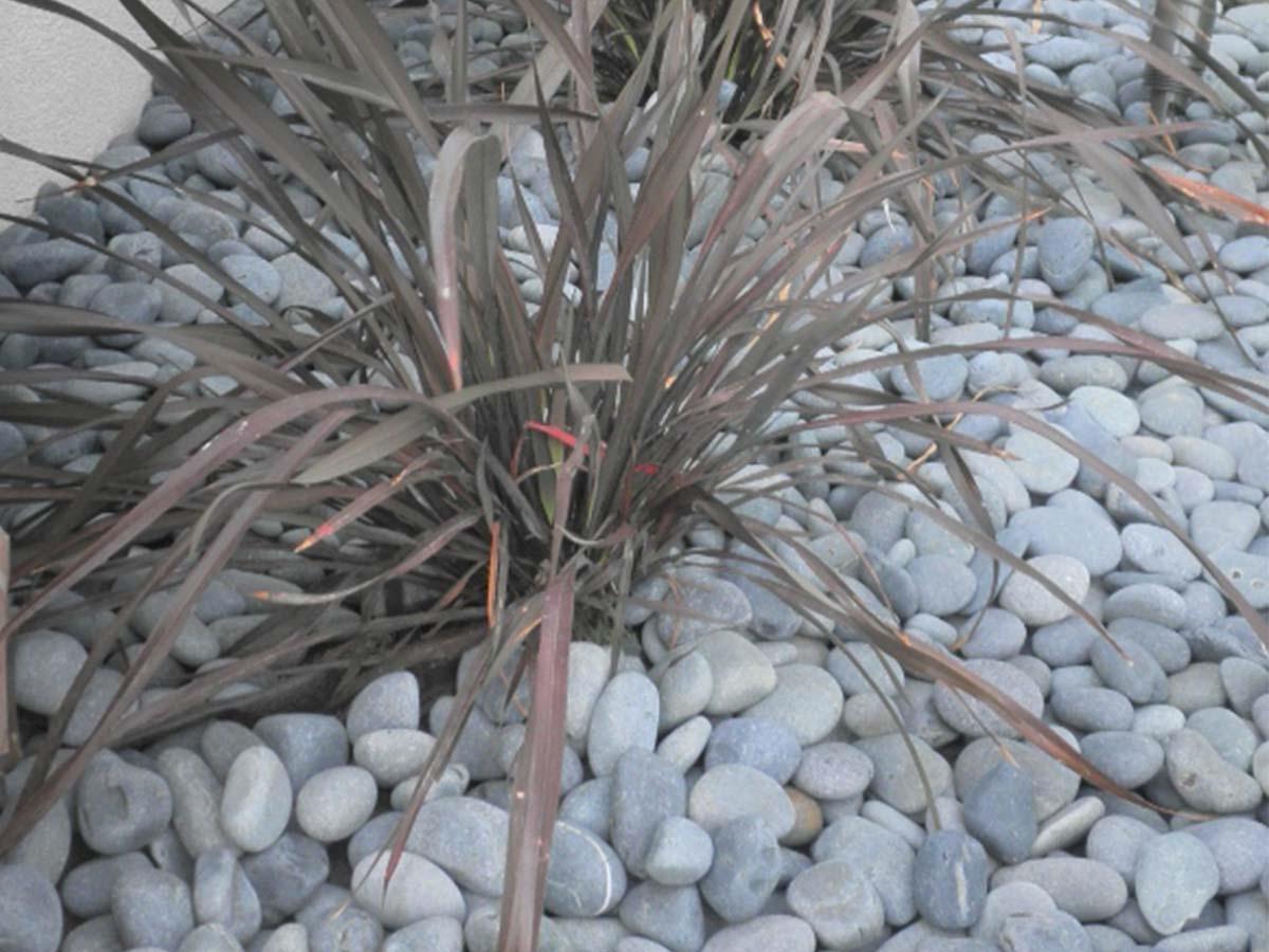 Garden Pebbles Near Me