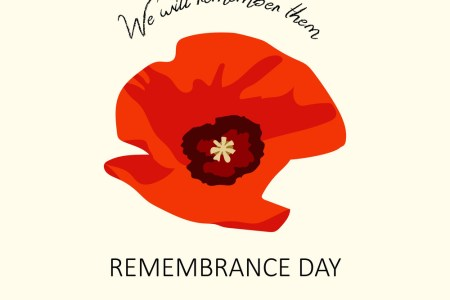 Poppy flower remembrance day flower shop near me flower shop bright poppy flower remembrance day symbol lest we forget lettering november th veterans day please remember the poppies what they november th veterans mightylinksfo