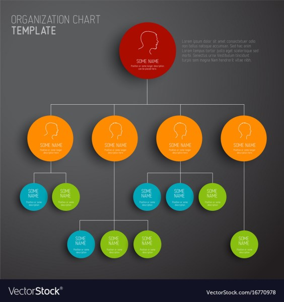 Modern and simple organization chart template Vector Image