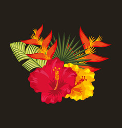 Tropical flowers black background Royalty Free Vector Image