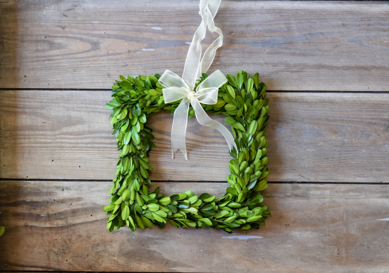 "Preserved Boxwood Wreath - Square w/ Ribbon 8"" | Mills ..."