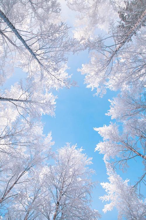snow winter tumblr F4F - Image by EVA