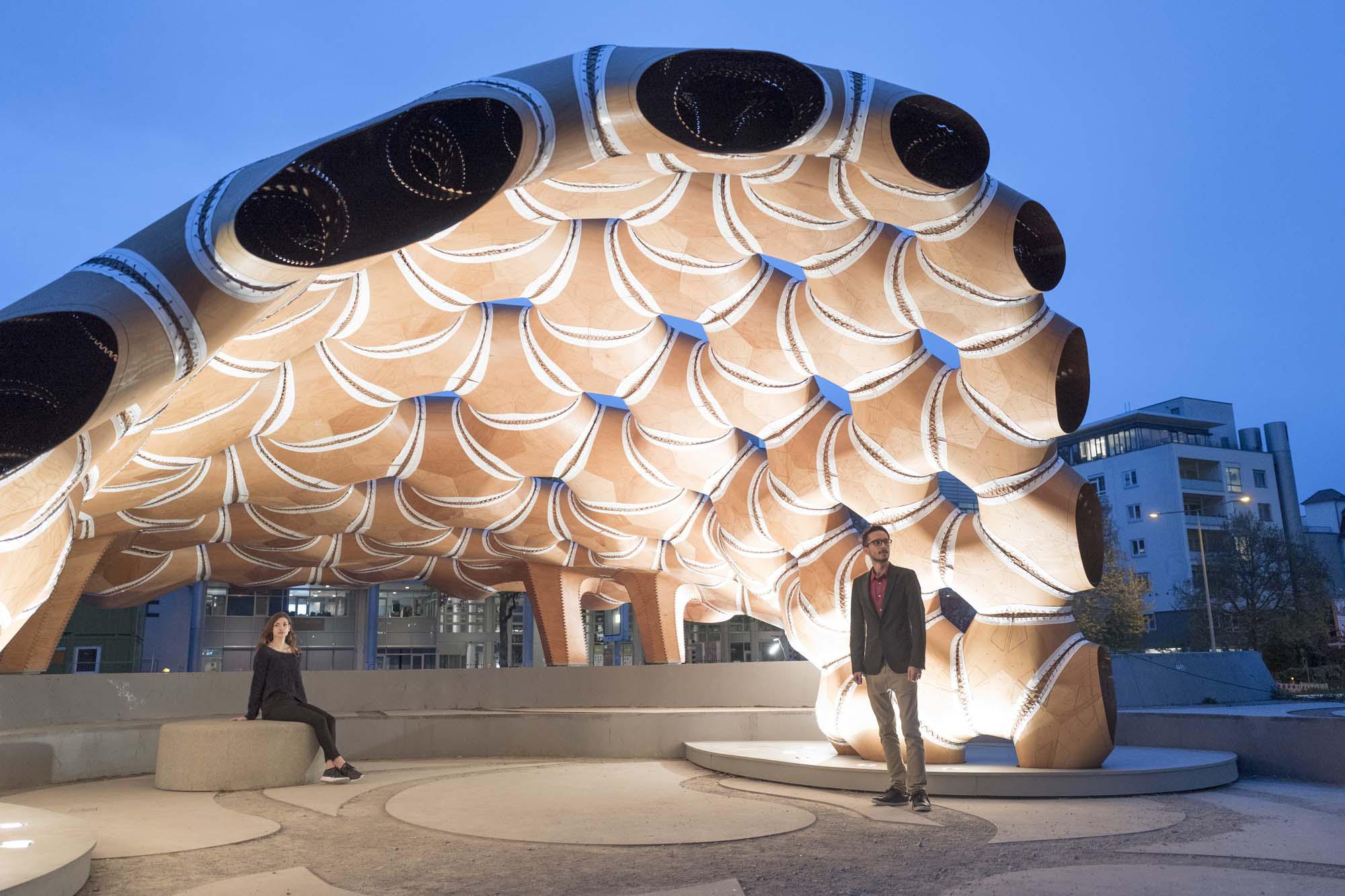 B Design Interiors
