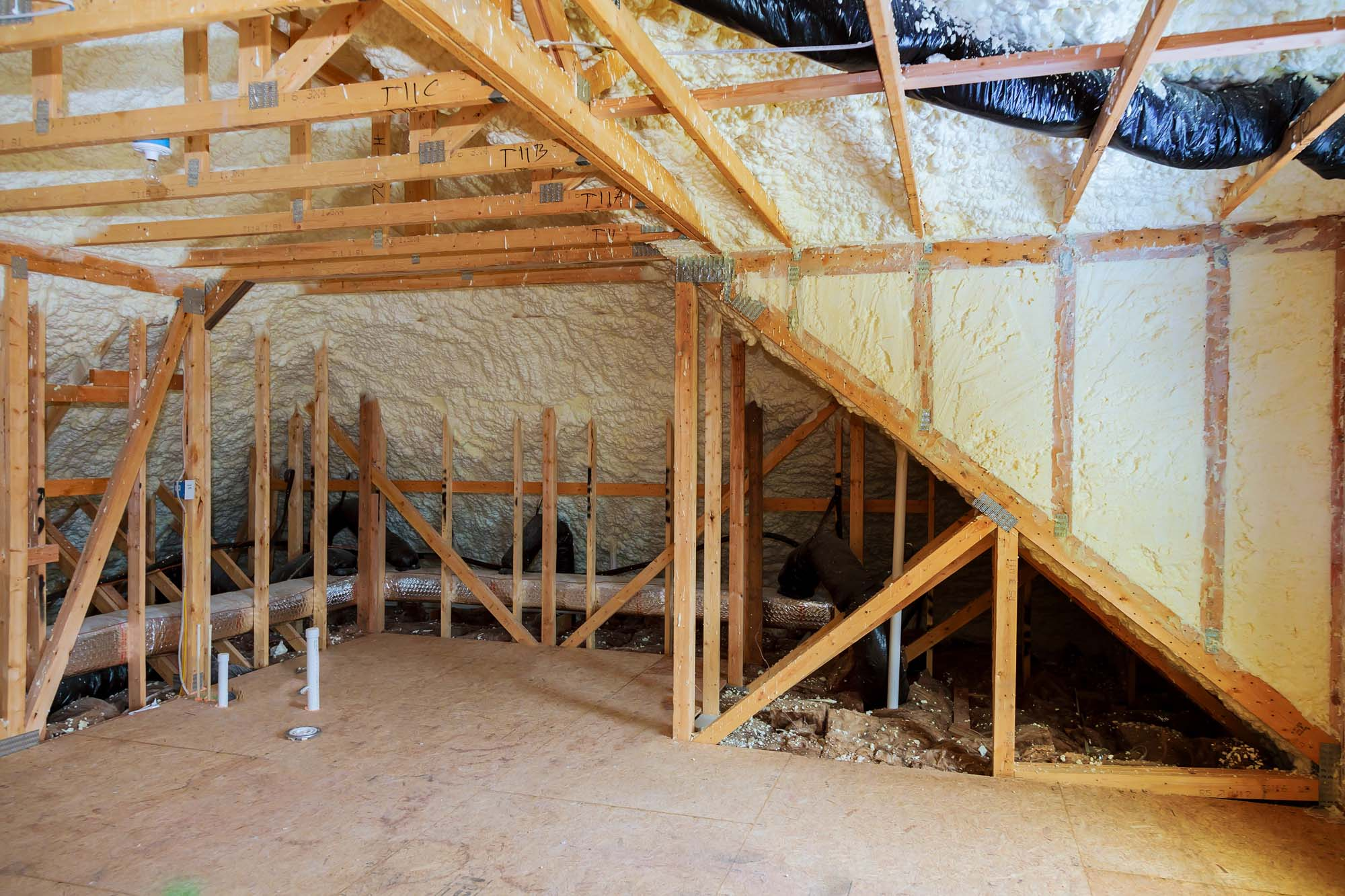 Homes Ravaged By Termites Hidden Behind Spray Foam