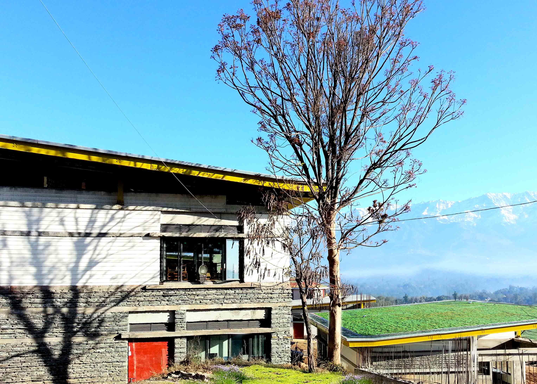Landscape Design Studio 7