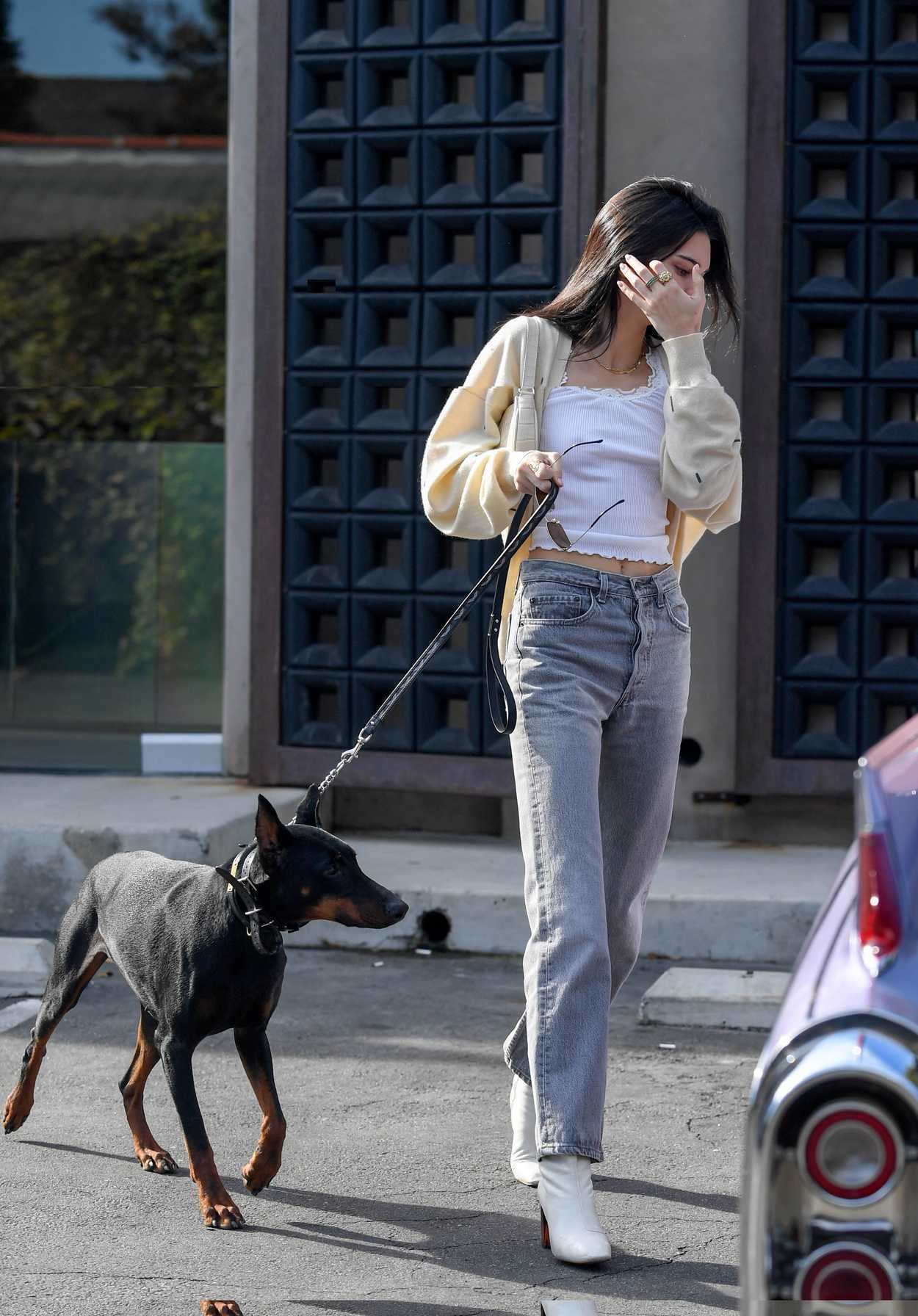 Kendall Jenner Walks Her Dog Out In West Hollywood 12 16