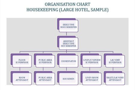 Organizational chart of hotel path decorations pictures full hkfirstsem organization chart of housekeeping department organization chart of housekeeping department management information systems assignment altavistaventures Image collections