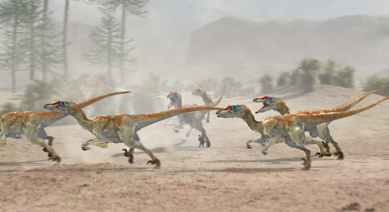 Velociraptor Pack By Japa2 3d Cgsociety