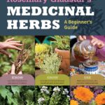 Natural Organic Herbal Remedies For Everyday Use For Your Family