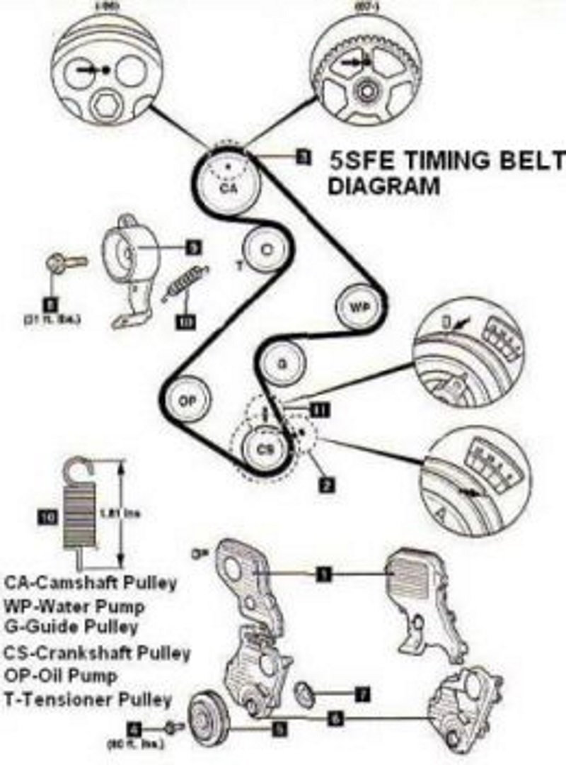 The timing belt ponents and alignment marks on the 5fse engine