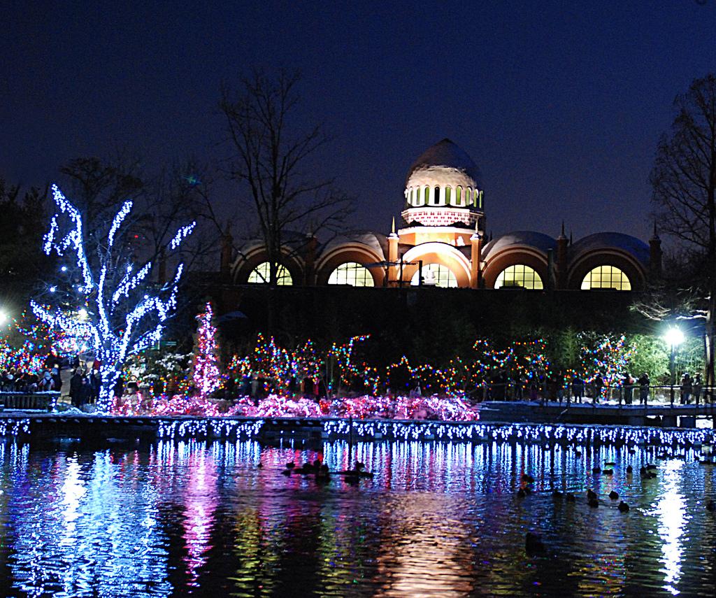 Cincinnati Zoo Festival Lights