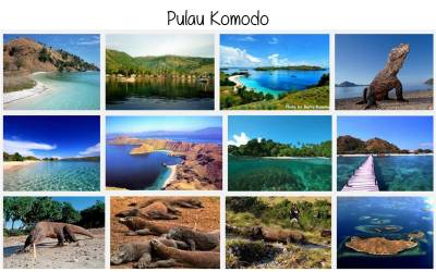 Komodo Island | Everything about Nusantara