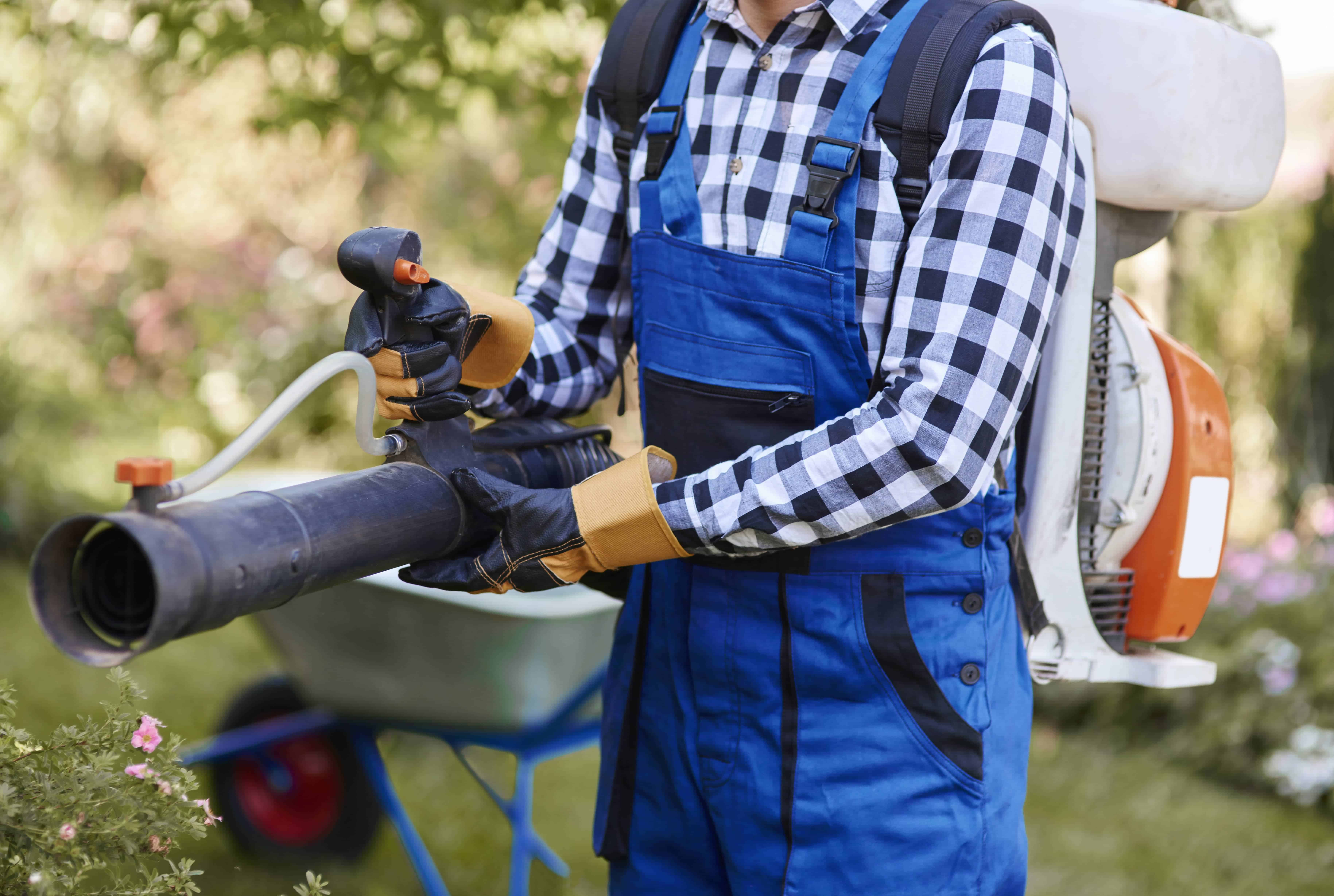 Leaf Blower Vacuum Reviews