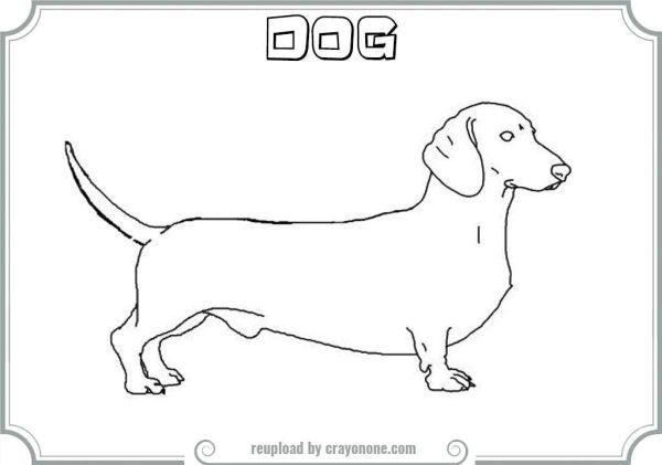 dachshund coloring pages # 62