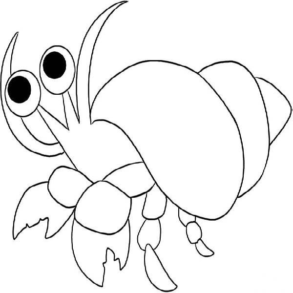 hermit crab coloring page # 16