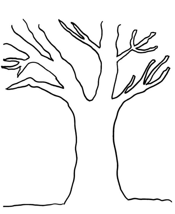 coloring pages of trees # 17