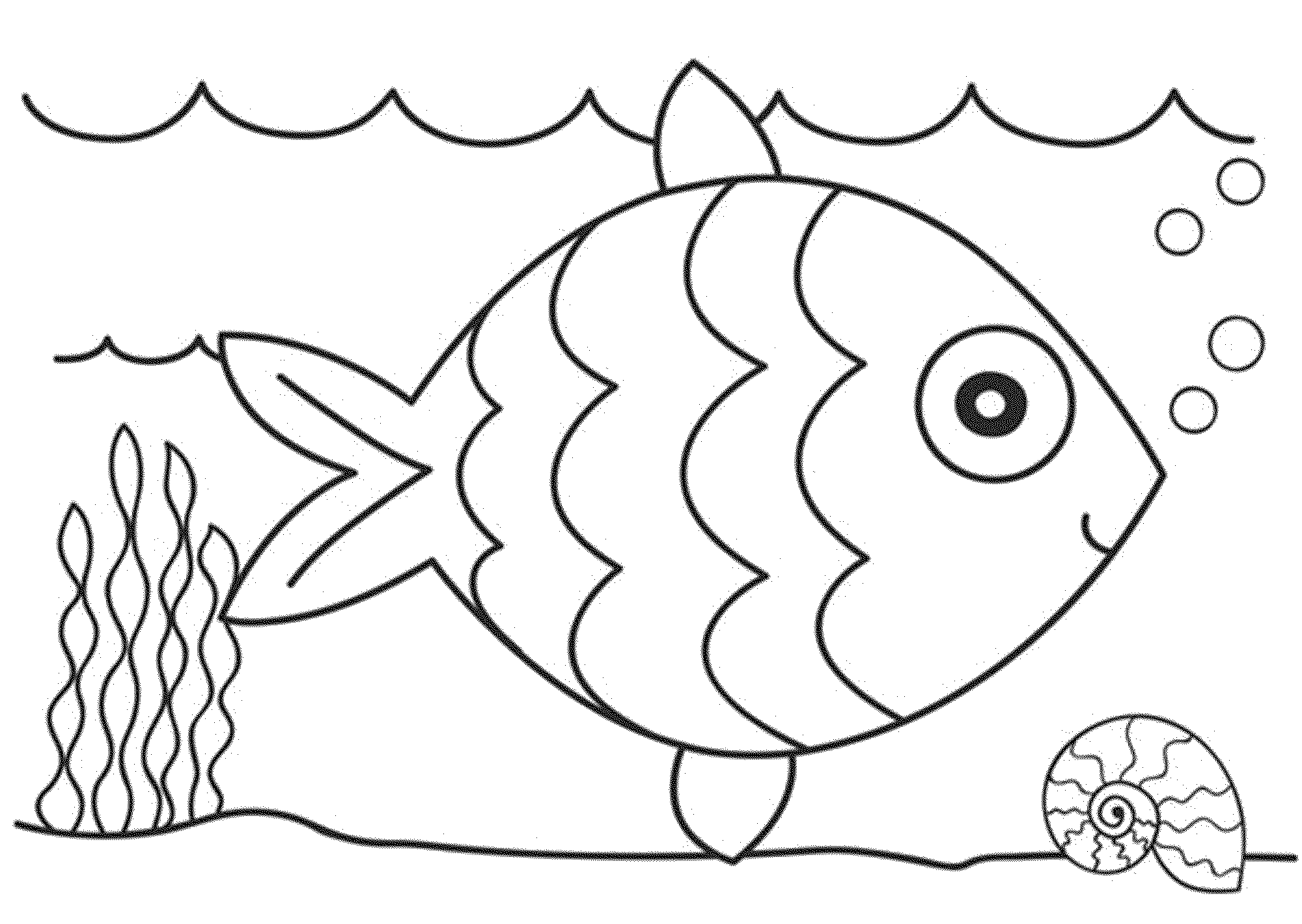 Bass Fish Coloring Pages Printable Kids Colouring Pages Clip