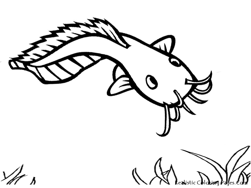 Fish Coloring Pages For Kids Coloring Pages Pictures Imagixs