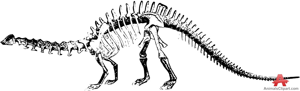 Dinosaur Bones Clip Art White Black And