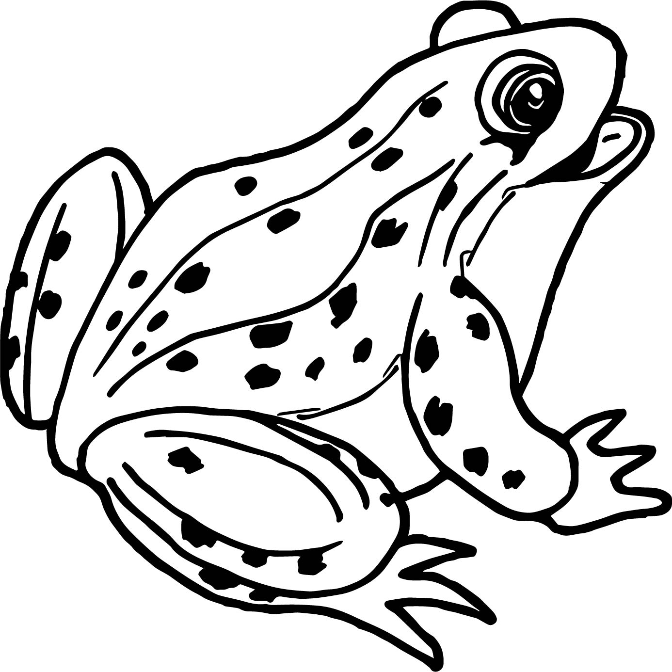 Frog Outline | Free download best Frog Outline on ...