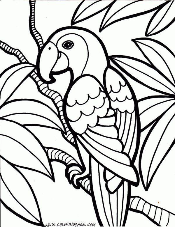 coloring pages printable # 16